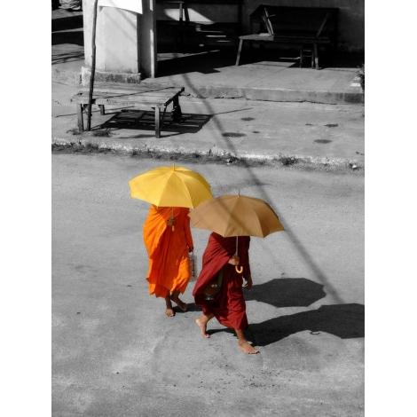 """""""Moines à l'ombrelle"""""""