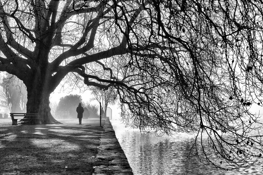 """""""Un matin d'hiver"""""""