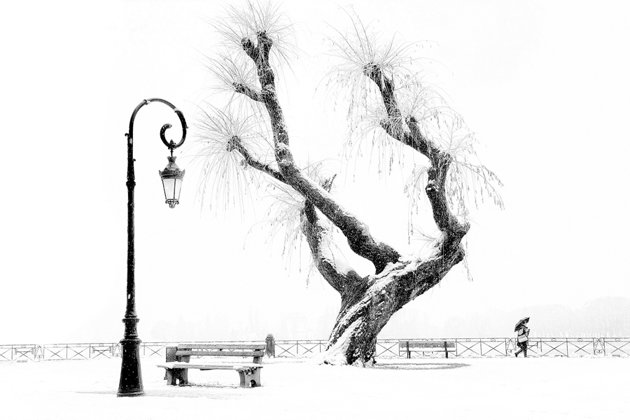 """Tree view"""