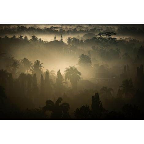"""Borobudur jungle 2"""