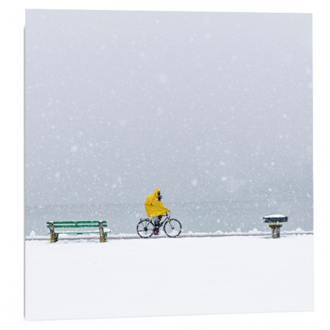 """Snow storm yellow"""