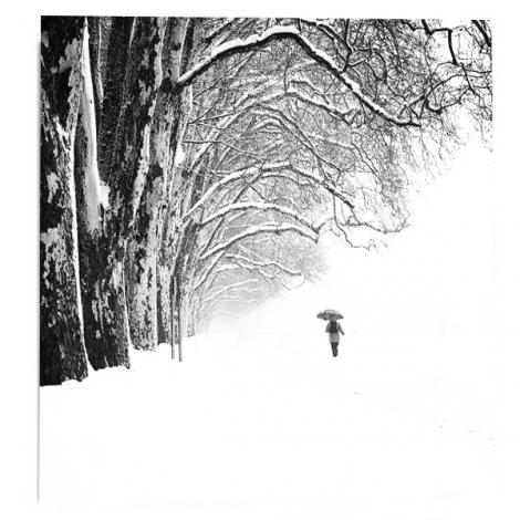 """""""les-griffes-de-l-hiver"""""""