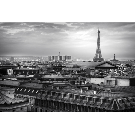 """""""Dominer Paris"""""""