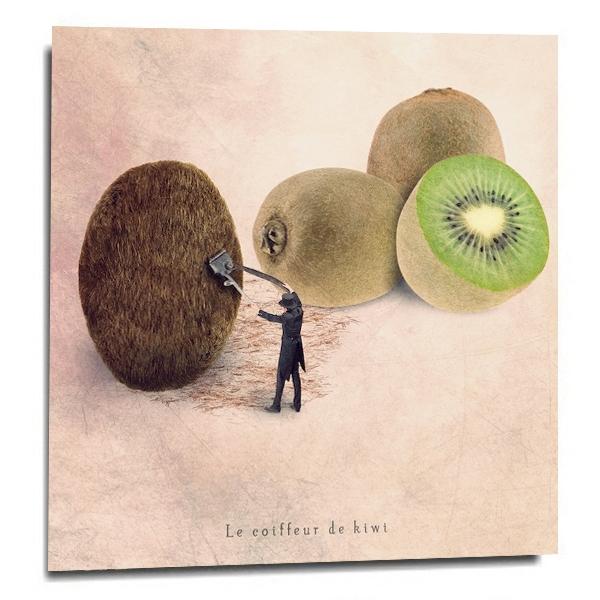 """""""Le coiffeur de kiwi"""""""